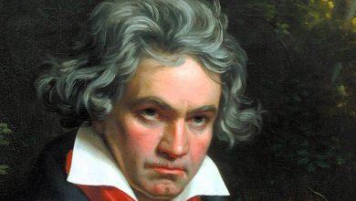 9. Senfoni - Neşeye Övgü Melodika Notaları