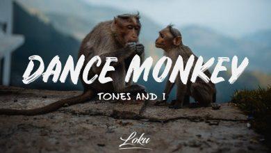 Dance Monkey Melodika Notaları - Dance Monkey Melodica Notes