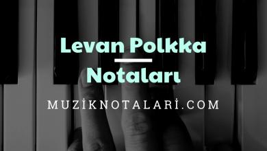 Levan Polkka Notaları