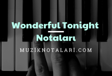 Wonderful Tonight Notaları