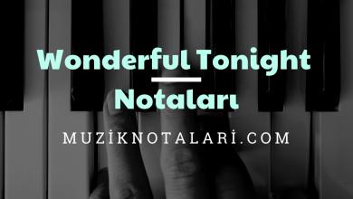 Wonderful Tonight Notaları